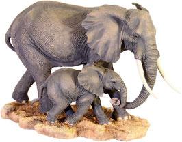 Elefanten-Kuh mit Kalb