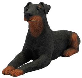 Hund - Dobermann liegend