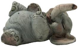 Elefant auf Rücken