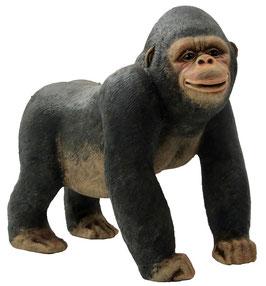 Gorilla stehend