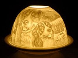 Porzellan - Windlicht Berner Sennenhunde