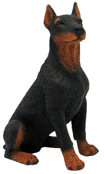 Hund - Dobermann sitzend