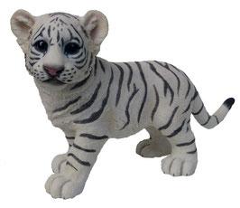 Tiger-Junge stehend weiss