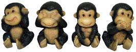 Schimpanse die vier Weisheiten