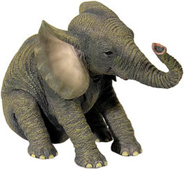 Elefant sitzend