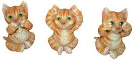 Katzen die drei Weisheiten rot