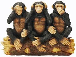 Affen die Drei Weisheiten