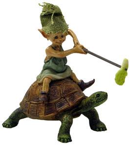 Pixie-mit Schildkröte
