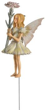 Flower Fairy - Nelkenmädchen