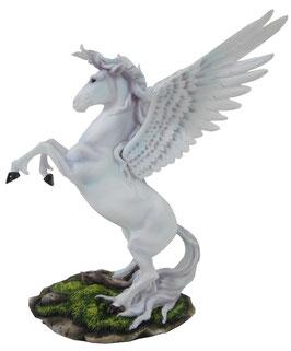 Pegasus aufsteigend