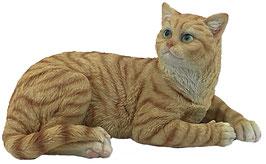 Katze liegend rot