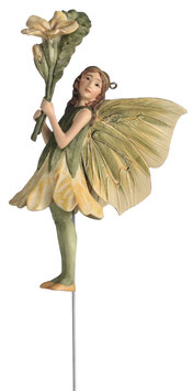 Flower Fairy - Primel