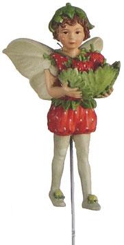 Flower Fairy - Erdbeere