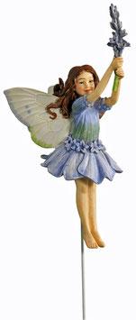 Flower Fairy - Lavendel