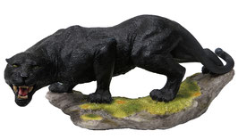 Panther fauchend