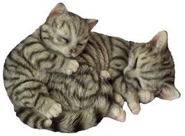 Katze mit Baby schlafend grau