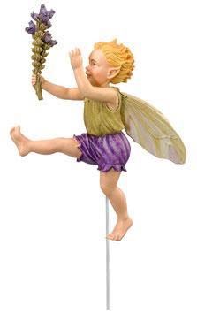 Flower Fairy - Heidekraut