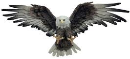 Wand - Adler fliegend