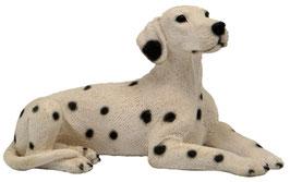 Hund - Dalmatiner liegend