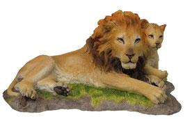 Löwe mit Jungem