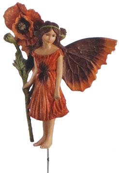 Flower Fairy - Mohnblume