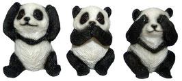 Panda die drei Weisheiten
