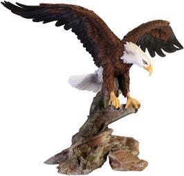 Adler auf Ast