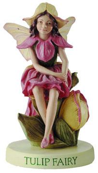 Flower Fairy auf Sockel Tulpe