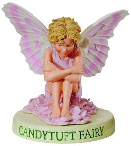 Flower Fairy auf Sockel Schleifenblume