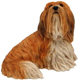 Hund - Lhasa Apso sitzend