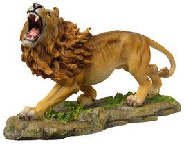 Löwe stehend fauchend