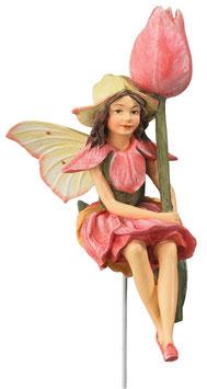 Flower Fairy - Tulpe