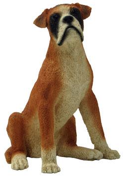 Hund - Boxer sitzend