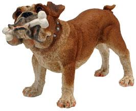 Hund - Bulldogge mit Knochen