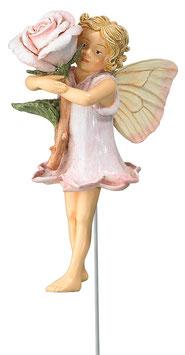 Flower Fairy - Rose