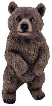 Bär stehend braun