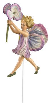 Flower Fairy - Stiefmütterchen