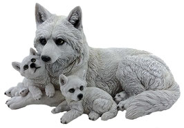 Wolf mit zwei Welpen weiss