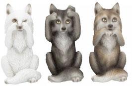 Wölfe die drei Weisheiten