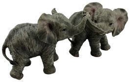 Elefanten-Paar