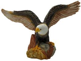 Adler Flügel offen