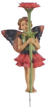 Flower Fairy - Zinnie