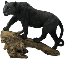 Panther stehend