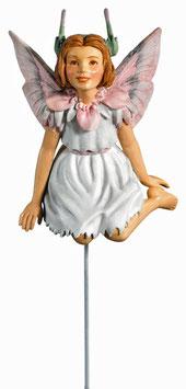 Flower Fairy - Reiherschnabel