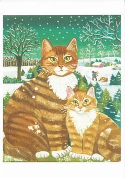 Chats en hiver