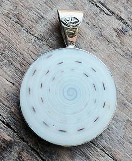 Anhänger in Shivamuschel in Silberfassung