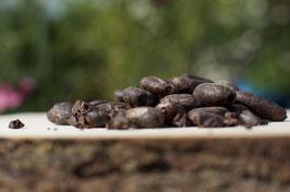 Rohe Kakaobohnen aus Sri Lanka
