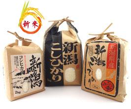 令和元年産【農場コシヒカリ】紐付き米袋