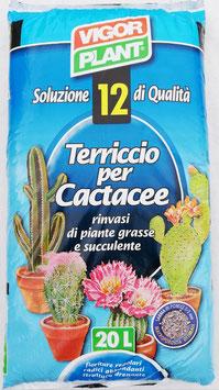 SACCO TERRA PER PIANTE GRASSE 20L