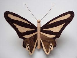 """Papillon """"Monarque"""" - Une face marquetée (3 couleurs) - décoration à suspendre"""